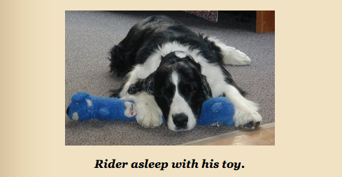 Rider and toy